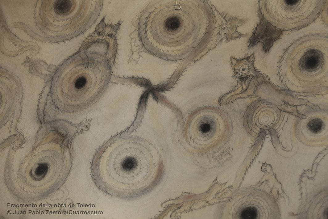 Fragmento del tapete diseñado por Francisco Toledo para el proyecto Biblioteca Personal de Carlos Monsivais. Marzo 12, 2012. Foto: © Juan Pablo Zamora / Cuartoscuro